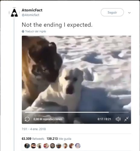 Un video sorprendente
