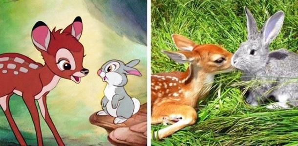 Tambor y Bambi (Bambi)