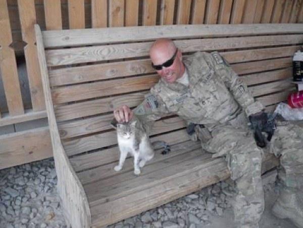 El gatito, consentido del campamento