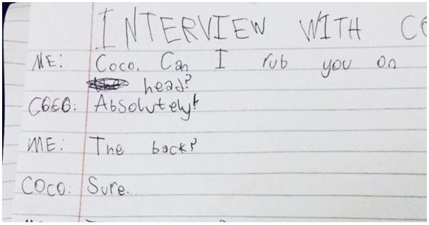 Una entrevista gatuna
