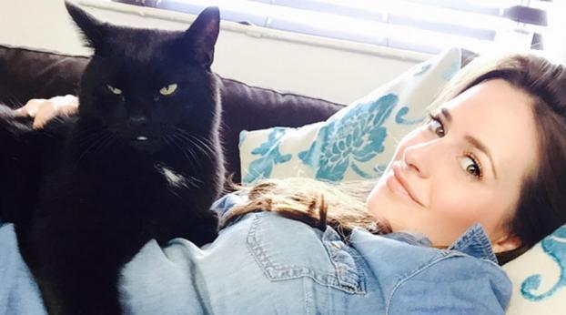 La absurda razón por la que no adoptan gatos negros te hará perder la fe en la humanidad