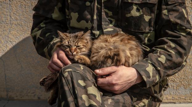 Este soldado salvó a un gatito durante su misión... y no pudo dejarlo atrás