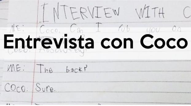 La entrevista de esta niña a su gato es demasiado graciosa